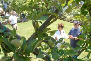 701 Edible Garden Tour photo.jpg