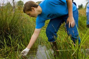 Pond Turtle Release Garrett Brenden by Rachel Gray 7-10.JPG