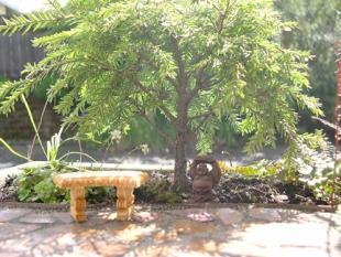 Start a mini garden.jpg