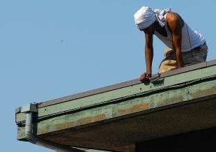 roof painters wild art photo.jpg