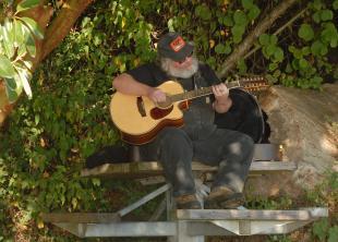 Lincoln Park guitar1.jpg